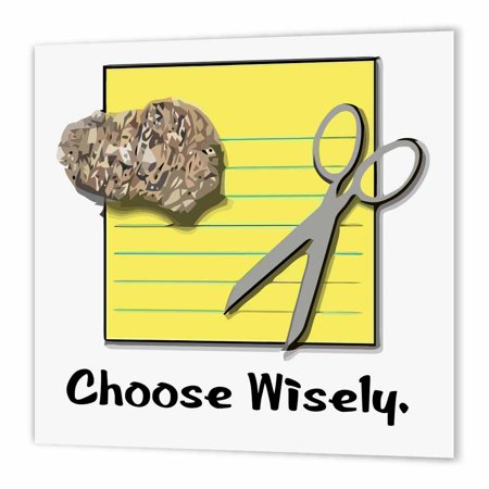 5e591028 3dRose Funny Choose Wisely Rock Paper Scissors Humor Design, Iron On Heat  Transfer, 10 by 10-inch, For White Material - Walmart.com