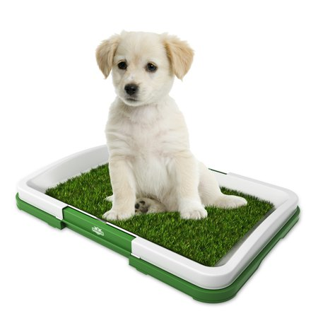 Artificial Grass Bathroom Mat for Puppies and Small Pets- Portable Potty Trainer for Indoor and Outdoor Use by PETMAKER- Puppy Essentials, 18.5â x