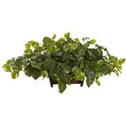 nearly natural pothos with a rectangle decorative planter - Decorative Planters
