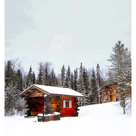 Canvas Print Forest Cloudy Winter Trees Snow Log Cabin Woods