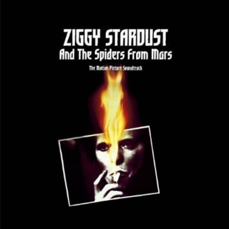 Ziggy Stardust And The Spiders From Mars (Vinyl) (Ziggy Stardust And The Spiders From Mars 1973)
