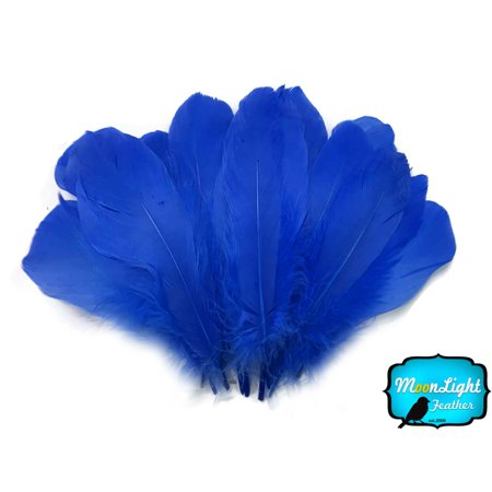 1 Pack - Royal Blue Goose Nagoire Loose Feather - 0.25 - Purple Feather