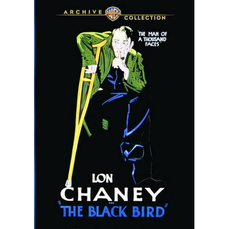 The Black Bird (DVD) (Best Chess Moves For Black)