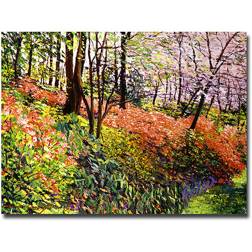 "Trademark Art ""Magic Flower Forest"" Canvas Wall Art by David Lloyd Glover"