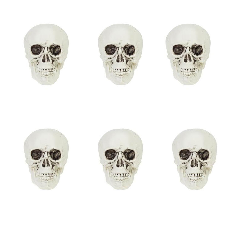 Pack of 6 White and Gray Skeleton Skull Heads Halloween