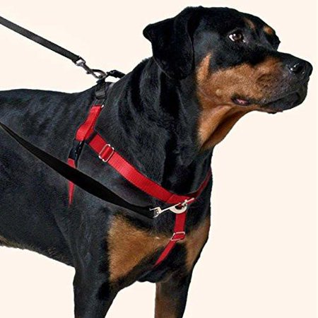 Freedom No-Pull Dog Harness Training Package with Leash Black Small