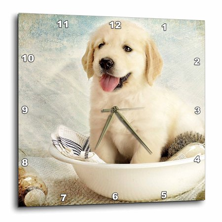 3dRose Cute Golden Retriever Puppy Spa Day Art photo courtesy Badestboss., Wall Clock, 15 by 15-inch