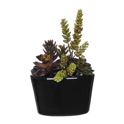 House of Silk Flowers Inc. Succulent Desk Top Plant in Decorative Vase