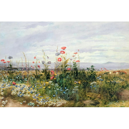 Wildflowers with a View of Dublin Dunleary Flower Scene Coastal Landscape Painting Print Wall Art By Andrew Nicholl