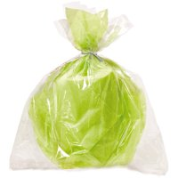 Plastic Cellophane Bags, 20 x 16 in, Clear, 6ct
