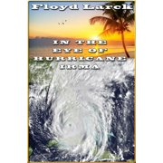 In The Eye of Hurricane Irma - eBook
