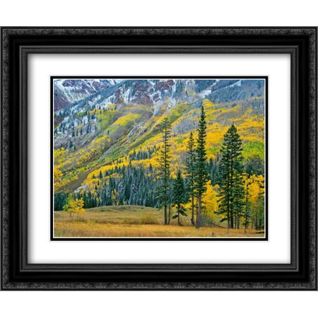 Aspen grove in fall colors, Maroon Bells, Snowmass Wilderness, Colorado 2x Matted 24x20 Black Ornate Framed Art Print by Fitzharris, Tim