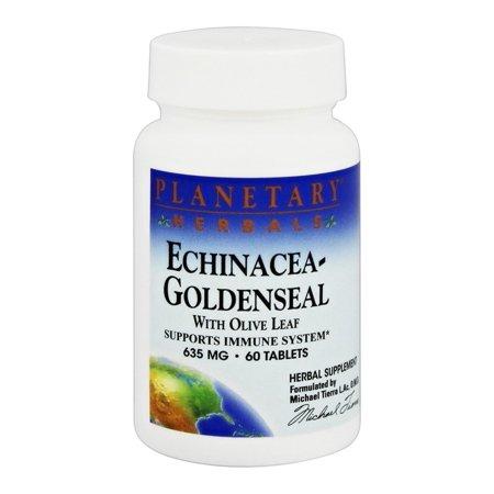Planetary Herbals Echinacea - Planetary Formulas Planetary Herbals  Echinacea-Goldenseal, 60 ea