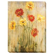 Artistic Home Gallery 'Poppy Serenade' by Liz Jardine Graphic Art on Wrapped Canvas