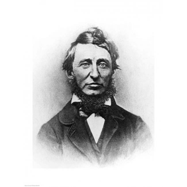 Henry Thoreau Poster Print - 18 x 24 in. - image 1 of 1