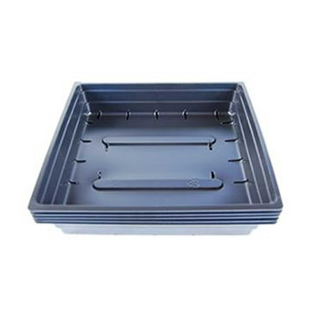 5 Pack of Durable Black Plastic Wheatgrass Growing Trays (With Drain Holes) 10