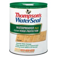Thompson's Waterseal Wood Protector Clear - 5 Gal