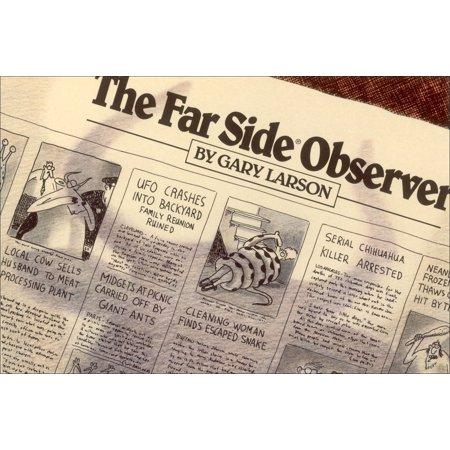 The Far Side Observer - Far Side Comic Halloween