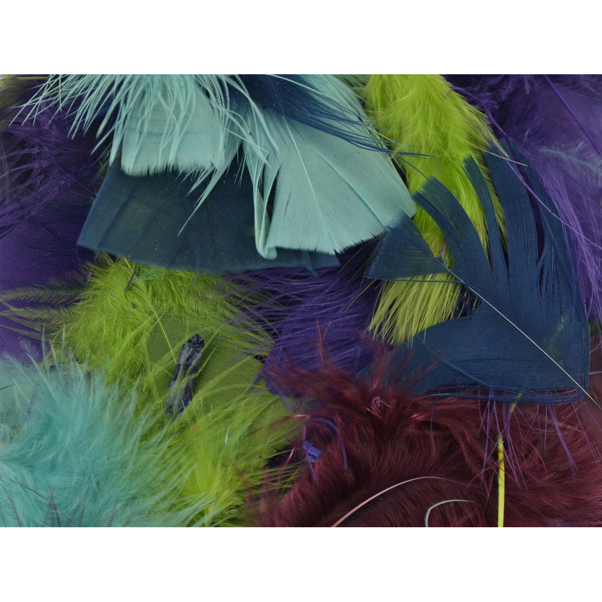 Packaged Feathers 70g-Designer Mix