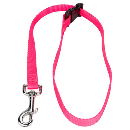 Country Brook Petz­® 5/8 Inch Nylon Choker Style Grooming Loop (Loop Leashes)