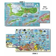 "Cozumel Fish and Creature Guide Franko Laminated Maps - Fish ID and Maps Franko's Maps about 9"" x 6"" Snorkel Snorkeling"