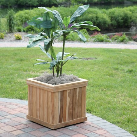 - Square Teak Wood Shadow Tree Box