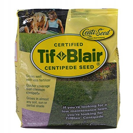Tifblair Centipede Grass Seed (1 Lb.) Direct From the