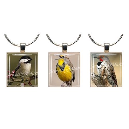 Songbird Glass (Songbirds ~ Scrabble Tile Wine Glass Charms Set Of 3 ~ Stemware Charms/Markers/Pendants)
