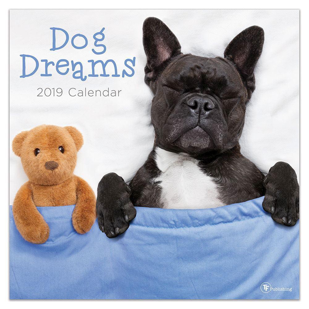 "2019 Dog Dreams 12"" x 12"" January 2019-December 2019 Wall Calendar by TF Publishing"