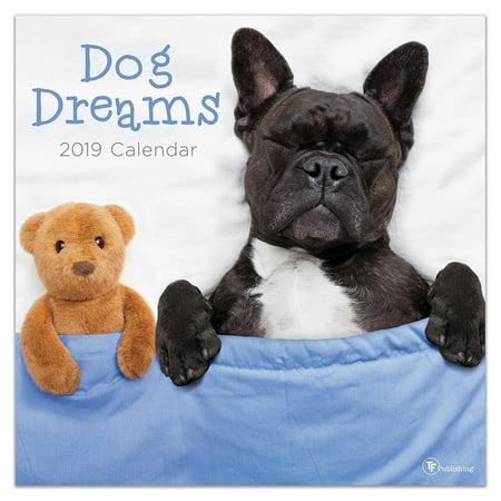 "2019 Dog Dreams 12"" x 12"" January 2019-December 2019 Wall Calendar"