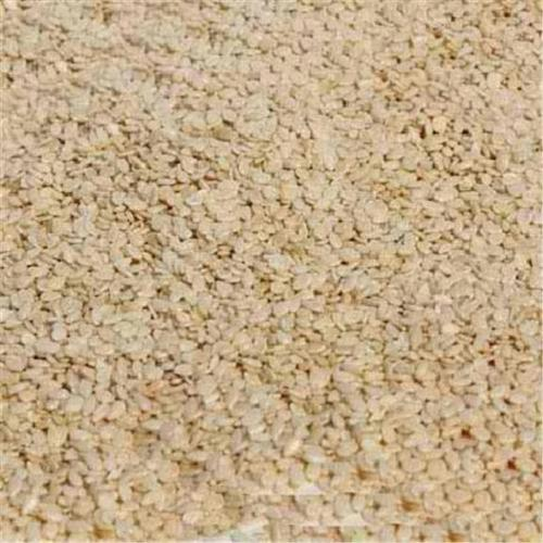 Bulk Seeds Organic White Hulled Sesame Seeds 5 Lb (Pack of 1)