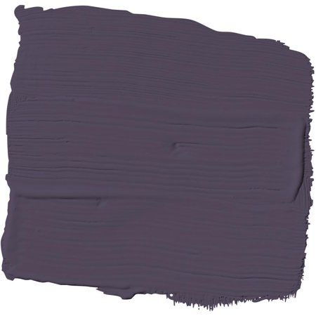 Black Tulip Violet Indigo Paint and Primer Glidden High Endurance Plus