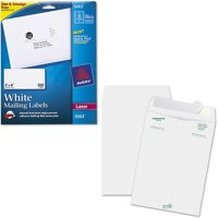 """Avery Laser Shipping Labels with TrueBlock Technology, White 2"""" x 4"""", Pack of 250 and Quality Park Survivor Tyvek Open-End Envelopes Bundle"""