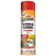 Spectracide Weed & Grass Foaming Edger, Aerosol, 17-oz