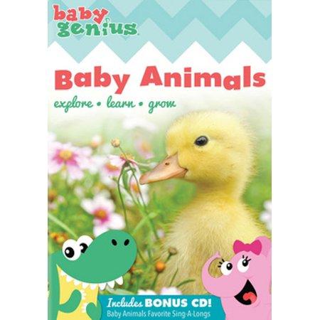 Baby Genius: Baby Animals (DVD)