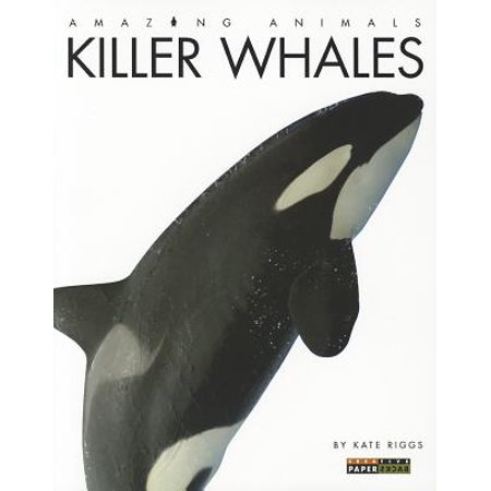 Amazing Animals: Killer - Killer Whale Size Chart