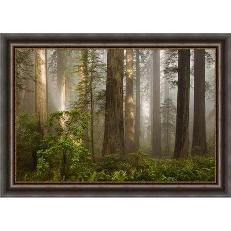 Somerset House Publishing 5108 Morning Light, Framed Textured Fine Art Print