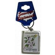 1266468 California Lucite Keychain- Hummingbird Case of 96