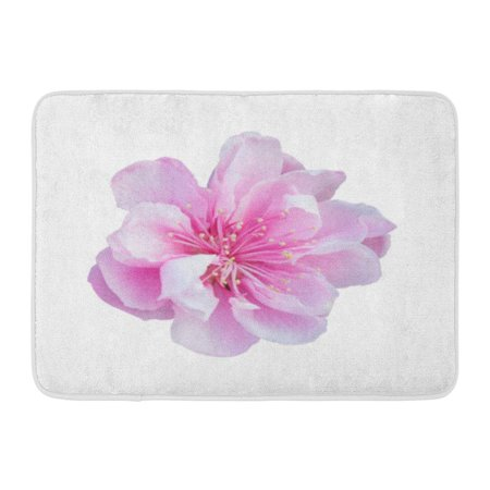 GODPOK Bloom Colorful Flower Pink Cherry Blossom White Sakura Winter Rug Doormat Bath Mat 23.6x15.7 inch](Winter Door Decorations For Classrooms)