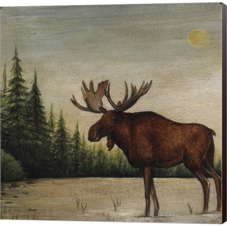 - North Woods Moose II by David Carter Brown, Canvas Wall Art