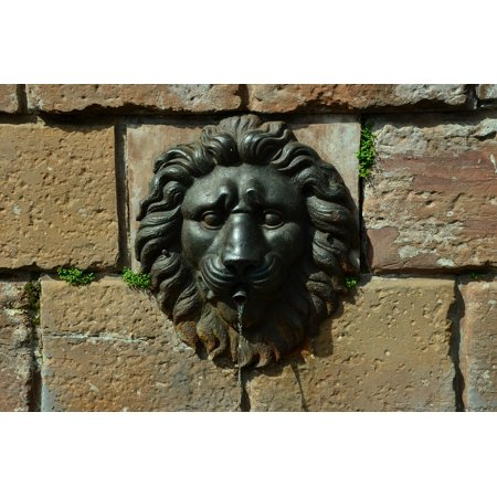 LAMINATED POSTER Iron Old Town Wall Lion Head Water Fountain Poster Print 24 x 36