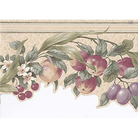 Cherry Wallpaper - Wallpaper For Less CV103721 Apples Cherries Floral Wallpaper Border, Cream