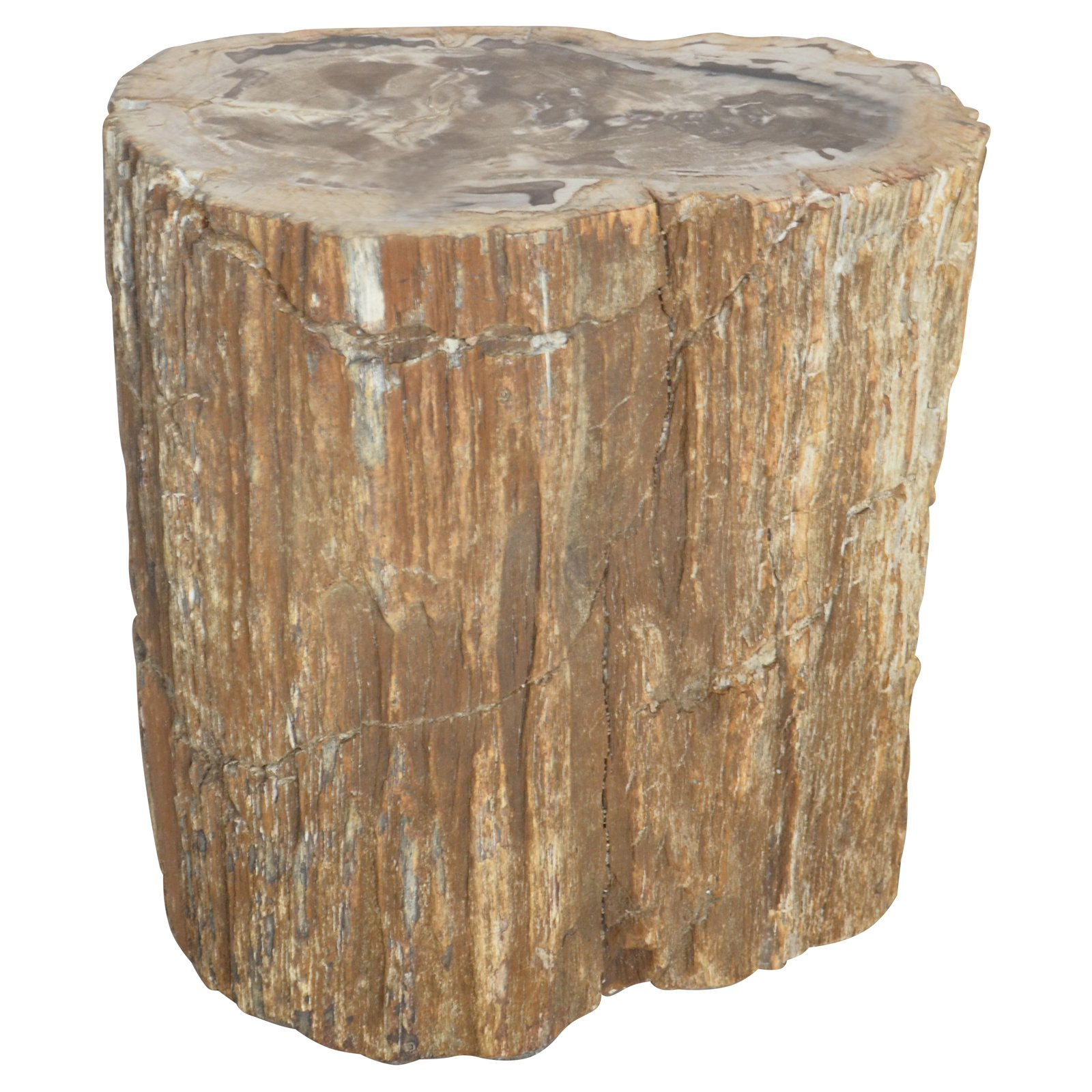 A And B Home Decorative Petrified Wood Indoor Garden Stool
