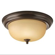 PROGRESS P3925-20T Light Fixture,150W,120V,Antique Bronze G8204971