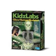 4M - P3375 | KidzLabs: Glow Human Skeleton