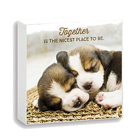 Nicest Place - Imagine Design Simply Stated Together is The Nicest Place to Be Box Plaque