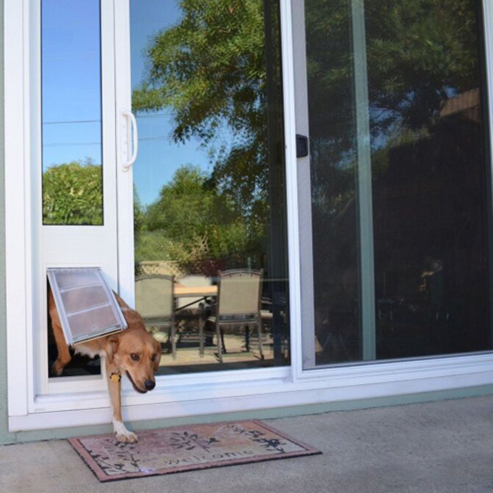 Endura Flap Pet Doors Thermo Panel 3e For Sliding Glass Doors 7475