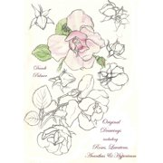 Original Drawings Including Roses, Lavatera, Acanthus and Hypericum - eBook