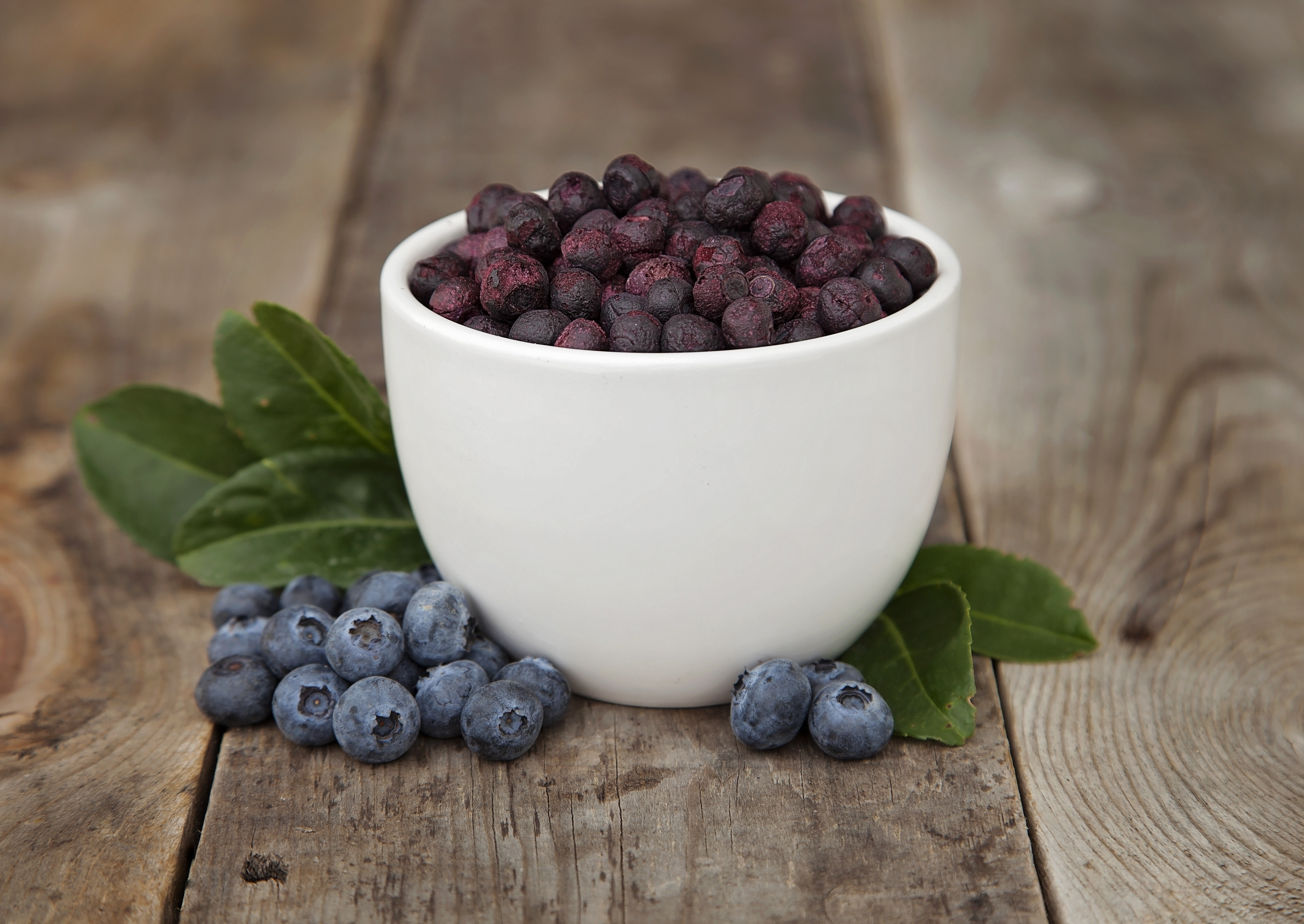 Freeze Dried Blueberries Valley Food Storage Whole Healthy Blueberries great for snacking Emergency food that is great for cooking &... by Valley Food Storage