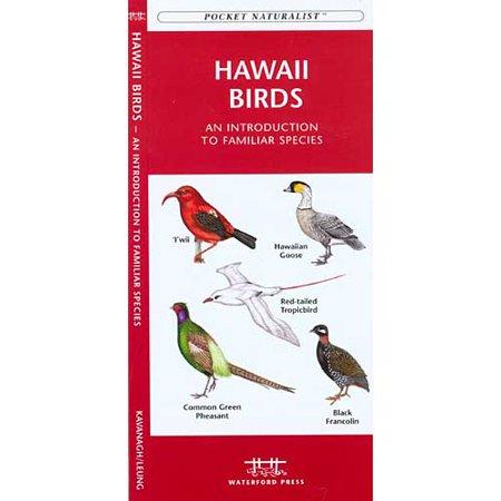 Hawaii Birds: A Folding Pocket Guide to Familiar Species